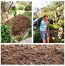 Preparing our front garden in our house, for organic agricul
