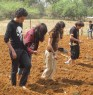 Me, planting corn seeds :)