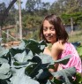 My daughter harvesting some broccoli..