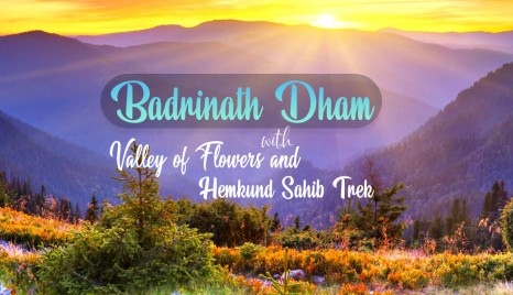 Badrinath with Valley of Flowers and Hemkund Sahib | Trekveda