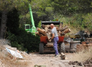 Filling the dumper with logs