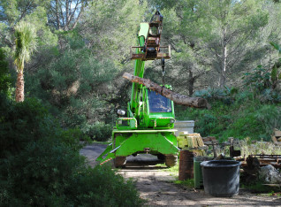 Lifting a trunk with the 14 ton telescopic handler