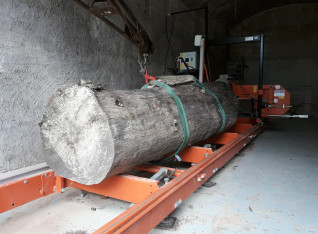 Tree on the saw mill rail
